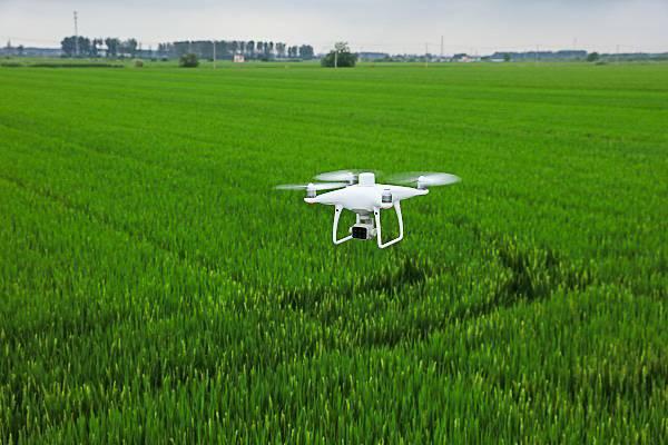 Drony w rolnictwie. Dron na tle zielonych pól.